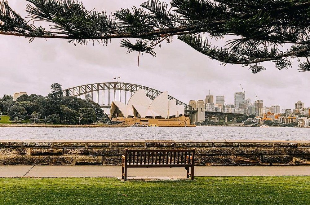 Mrs macquarie Chair